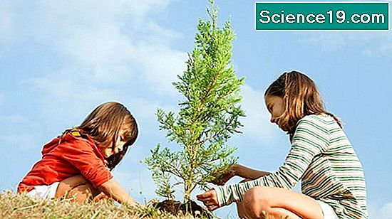 Earth Day Fun Facts for Kids