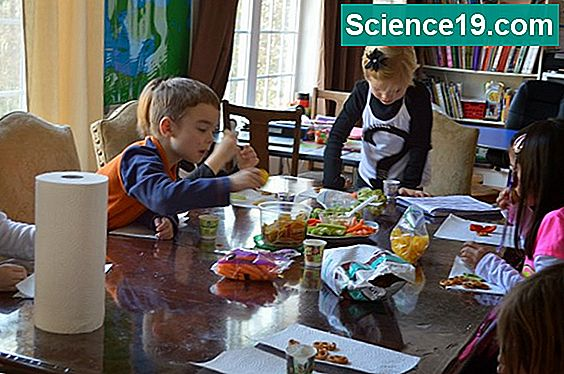 Kinetic Energy Experiments for Kids
