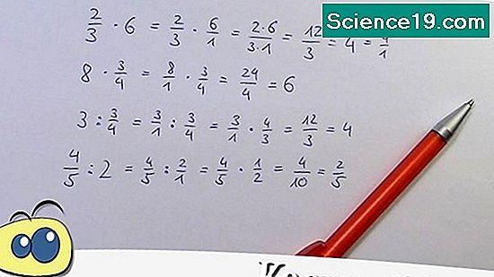 Was Ist Eine Unabhängige Variable In Der Quantitativen Forschung