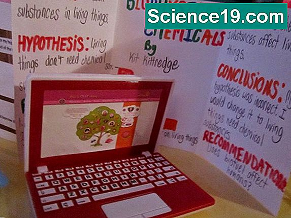 Girly Science Fair Project Ideas