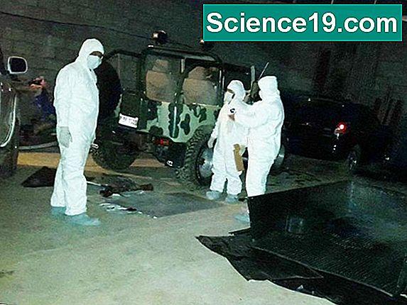 Cmo hacer hidrxido de potasio portal multimedia cientfica y el hidrxido de potasio es una base fuerte hecha del potasio de metal alcalino nmero atmico 19 en la tabla peridica es un material de partida til en urtaz Image collections