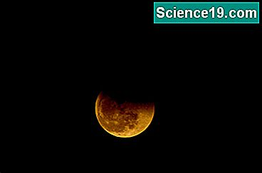 Lunar Eclipse Science Projects